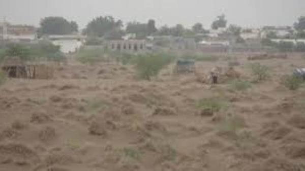 ميليشيا الحوثي تستهدف مزارع المواطنين في التحيتا
